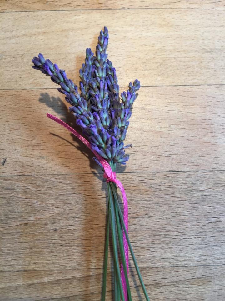 Lavendel zu einem Sträußchen zusammenbinden für Lavendelstab