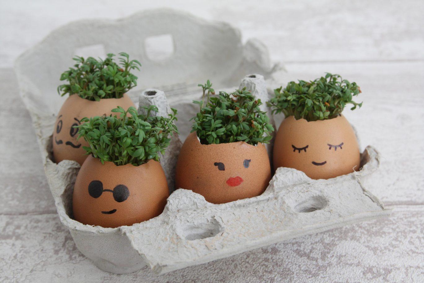 Osterdeko mit Kindern basteln: Kresse Eier