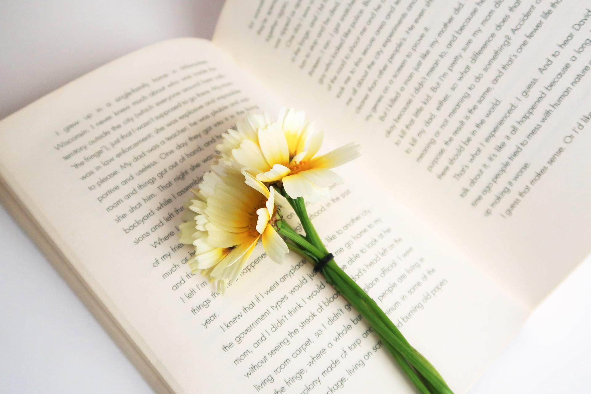 DIYs für Leseratten – 12 Lesezeichen zum Selbermachen   DIY Family