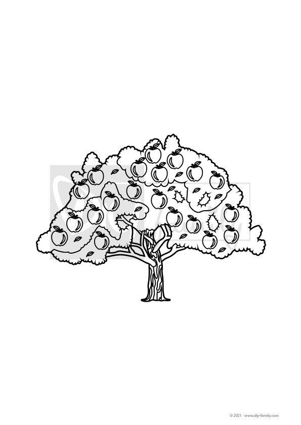 Apfelbaum – Einzelausmalvorlage