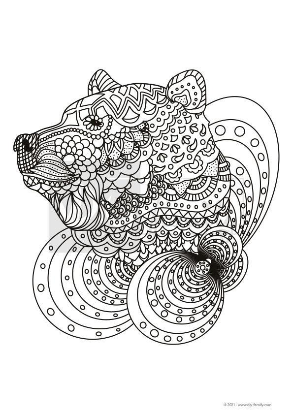 Bär Mandala – Einzelausmalvorlage
