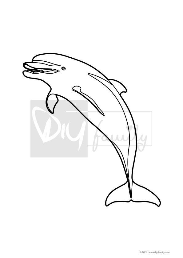 Delfin – Einzelausmalvorlage