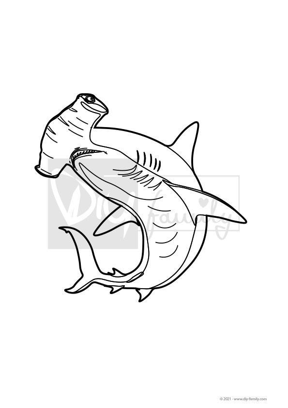 Hammerhai – Einzelausmalvorlage