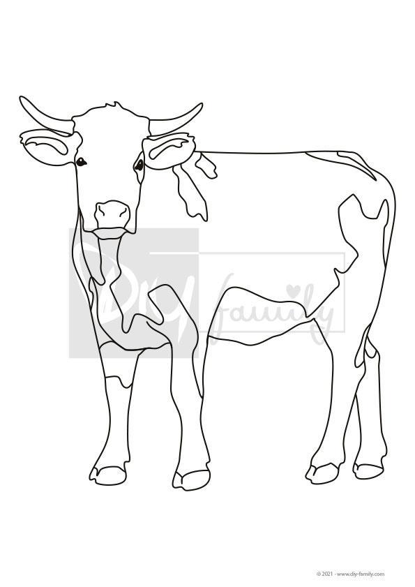 Kuh – Einzelausmalvorlage