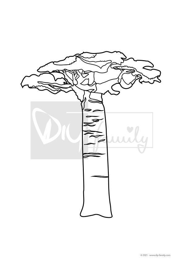 Bäume – Ausmalvorlagen Sammlung