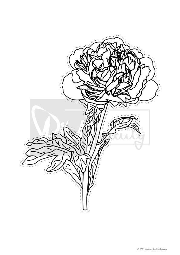 Blumen – Motive zum Ausmalen, Ausschneiden und Aufkleben