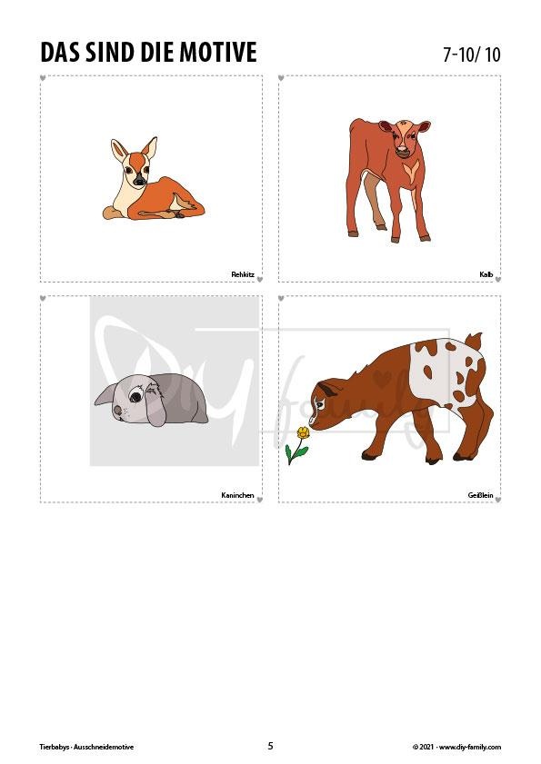 Tierbabys – Motive zum Ausmalen, Ausschneiden und Aufkleben