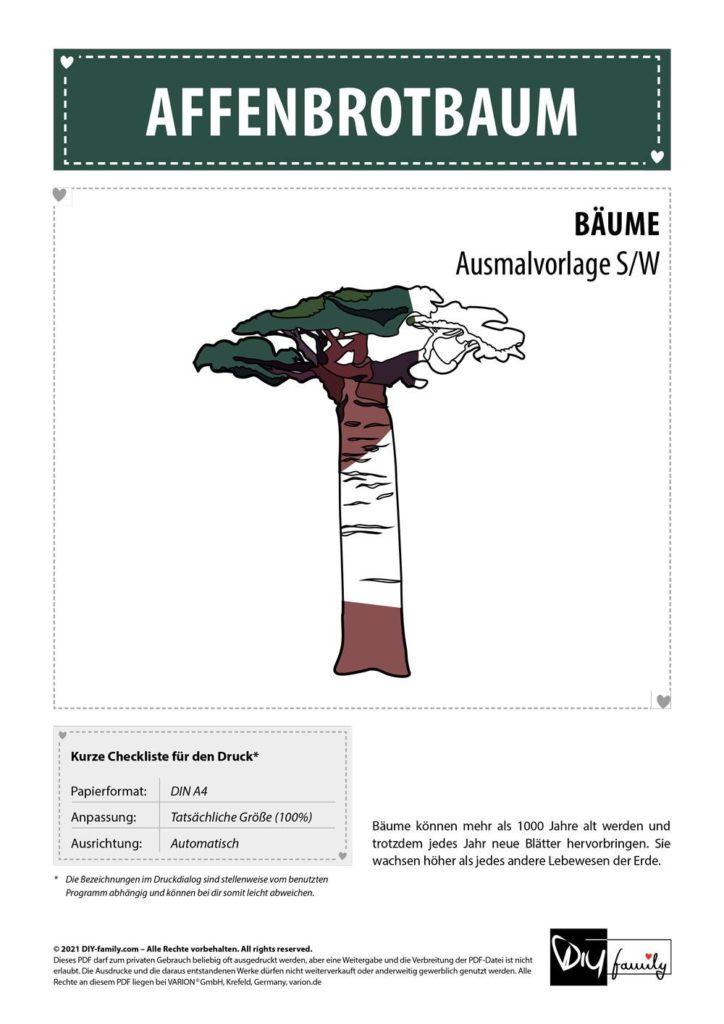 Affenbrotbaum – Einzelausmalvorlage
