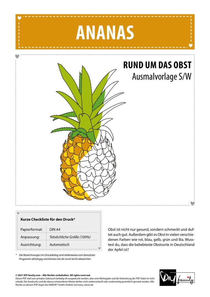 Ananas – Einzelausmalvorlage
