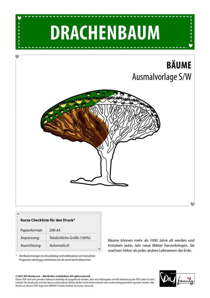 Drachenbaum – Einzelausmalvorlage