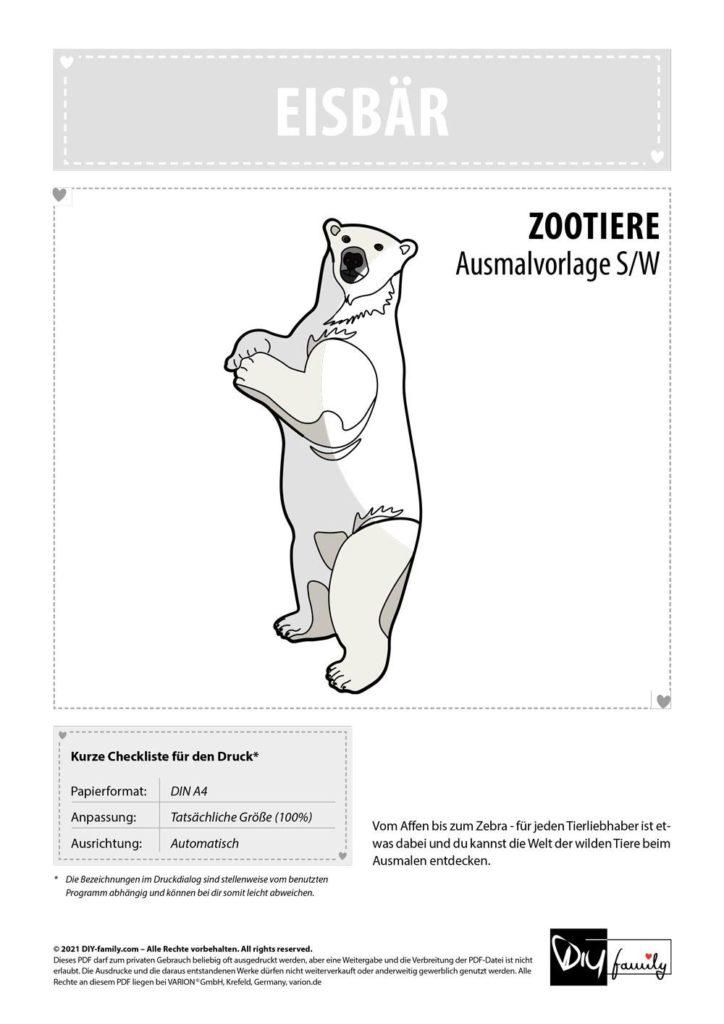 Eisbär – Einzelausmalvorlagen