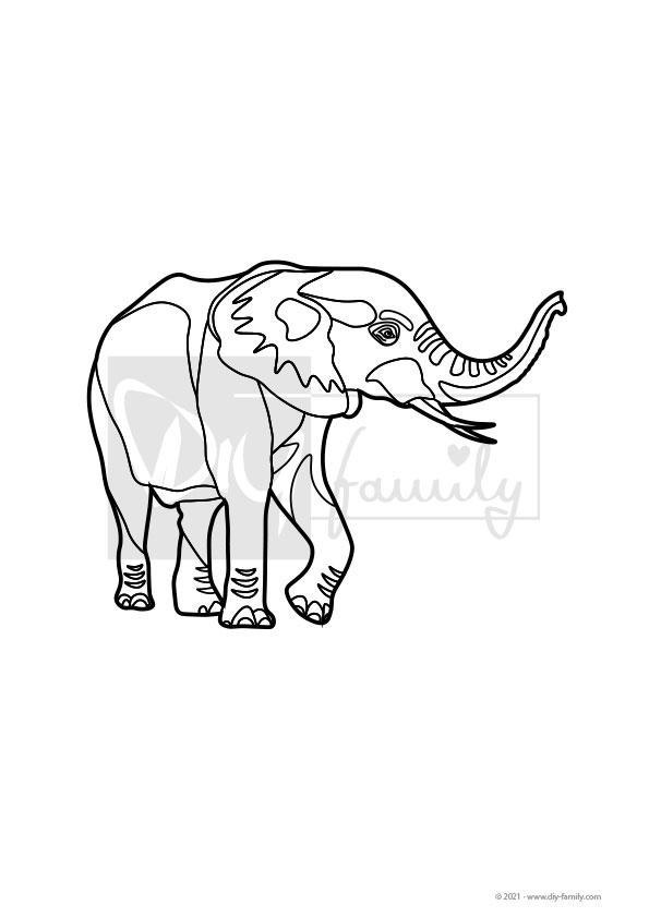 Elefant – Einzelausmalvorlagen
