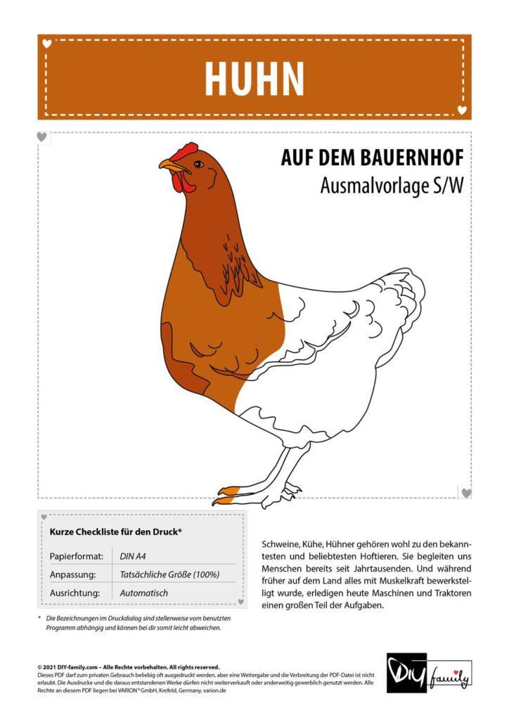 Huhn – Einzelausmalvorlage