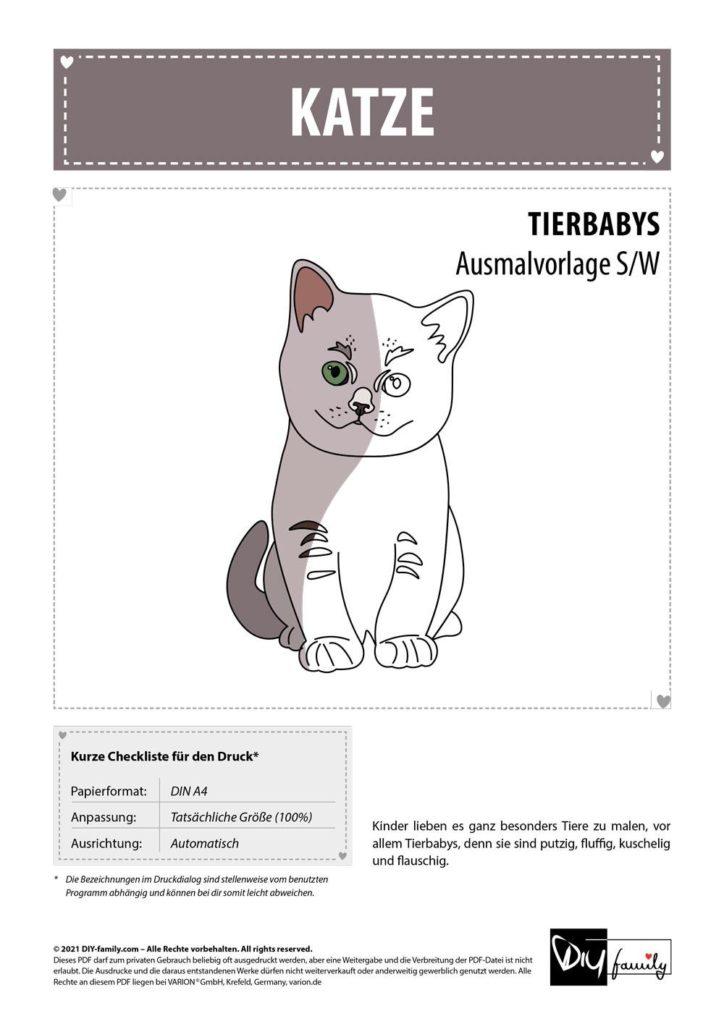 Katze – Einzelausmalvorlage