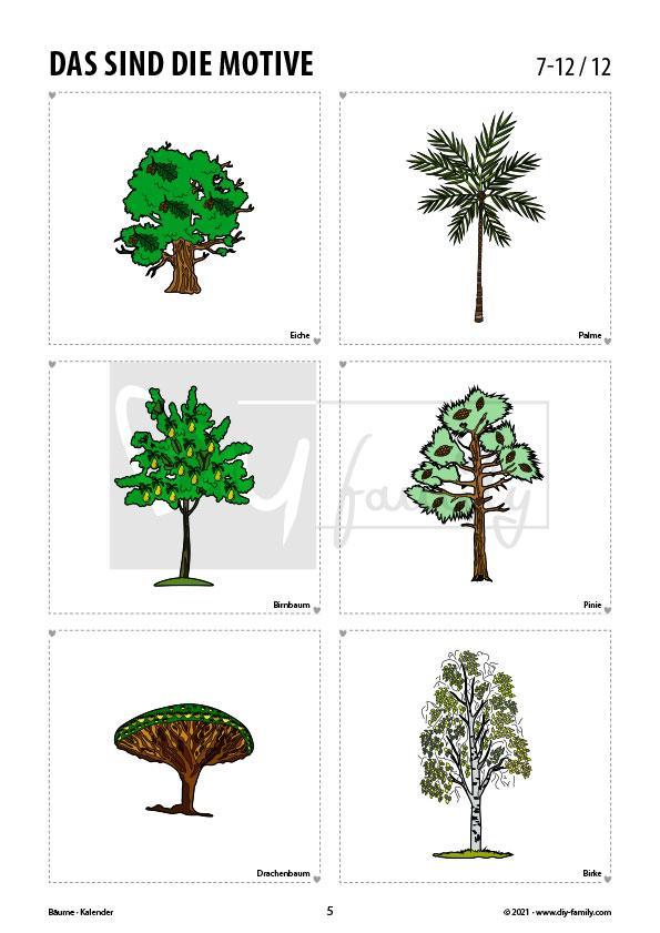 Bäume – Kalender 2021