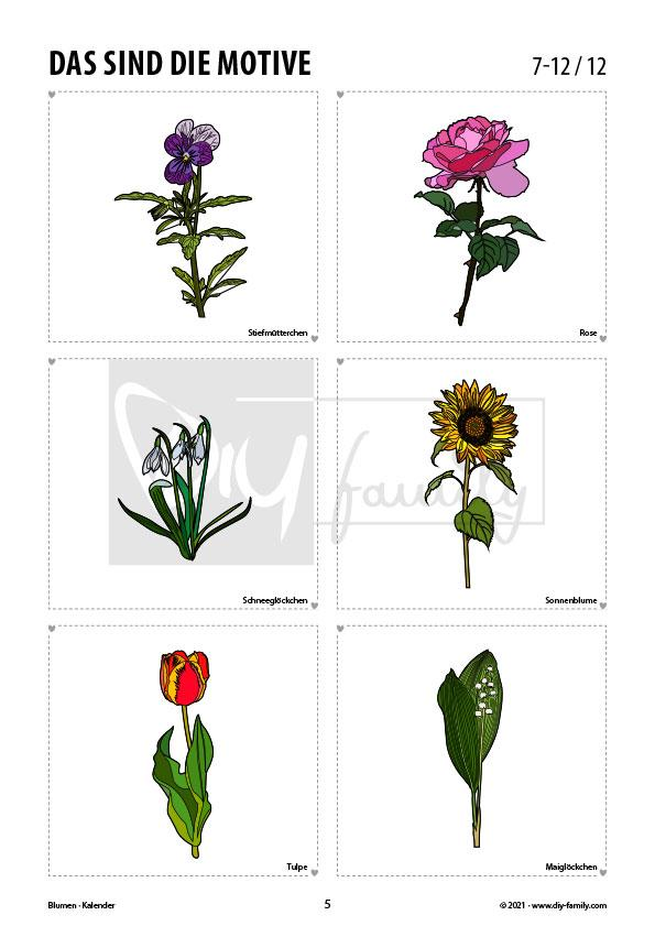 Blumen – Kalender 2021
