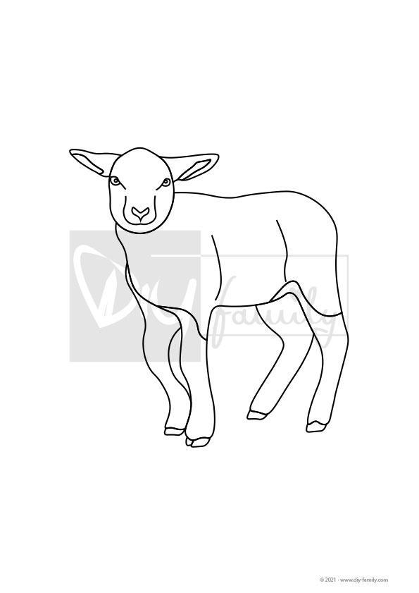 Lamm – Einzelausmalvorlage