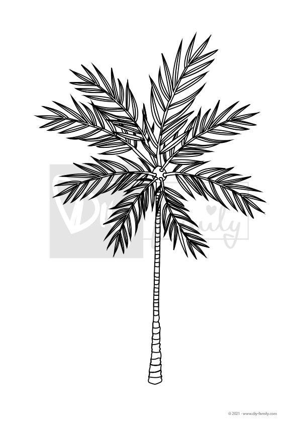 Palme – Einzelausmalvorlage