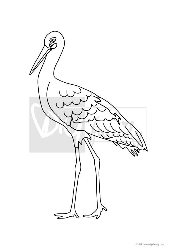 Storch – Einzelausmalvorlage