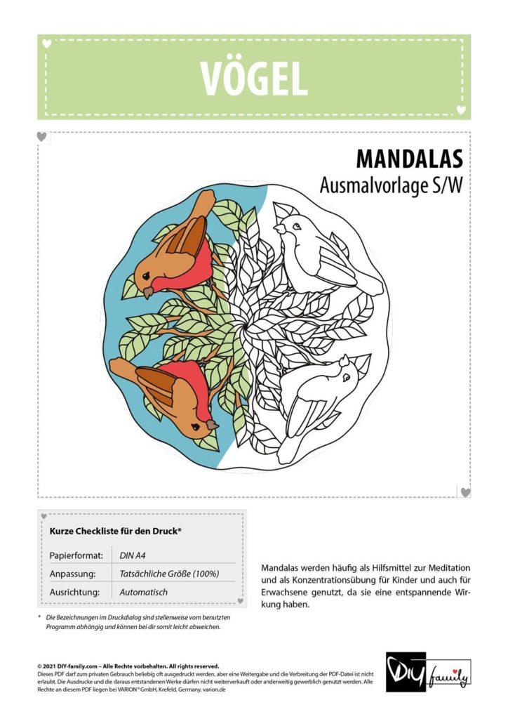 Vögel Mandala – Einzelausmalvorlage